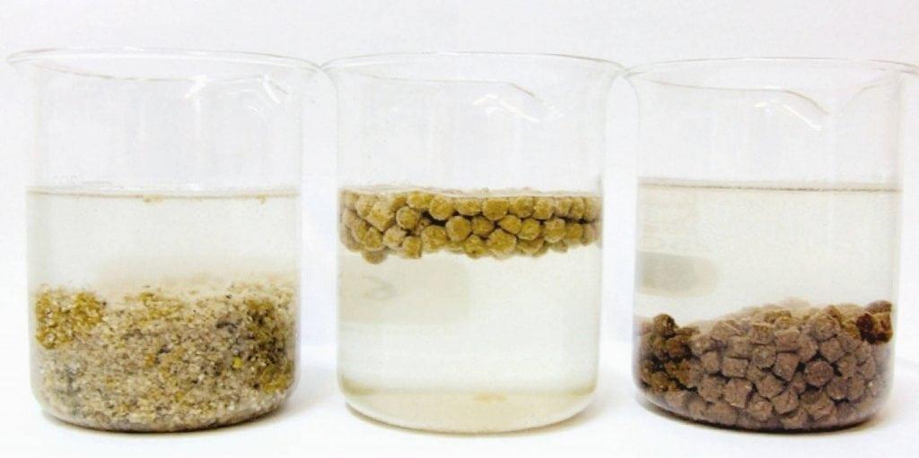 Wassergläser mit extrudiertem und nicht extrudiertem Fischfutter.